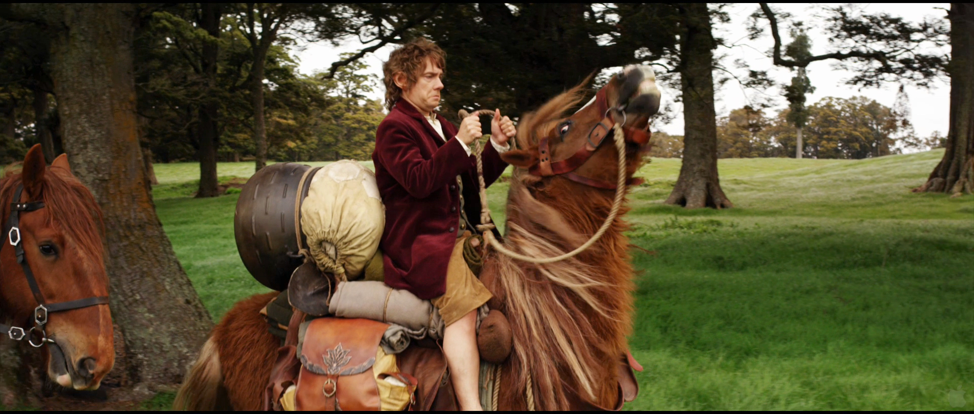 [Image of Bilbo on pony]